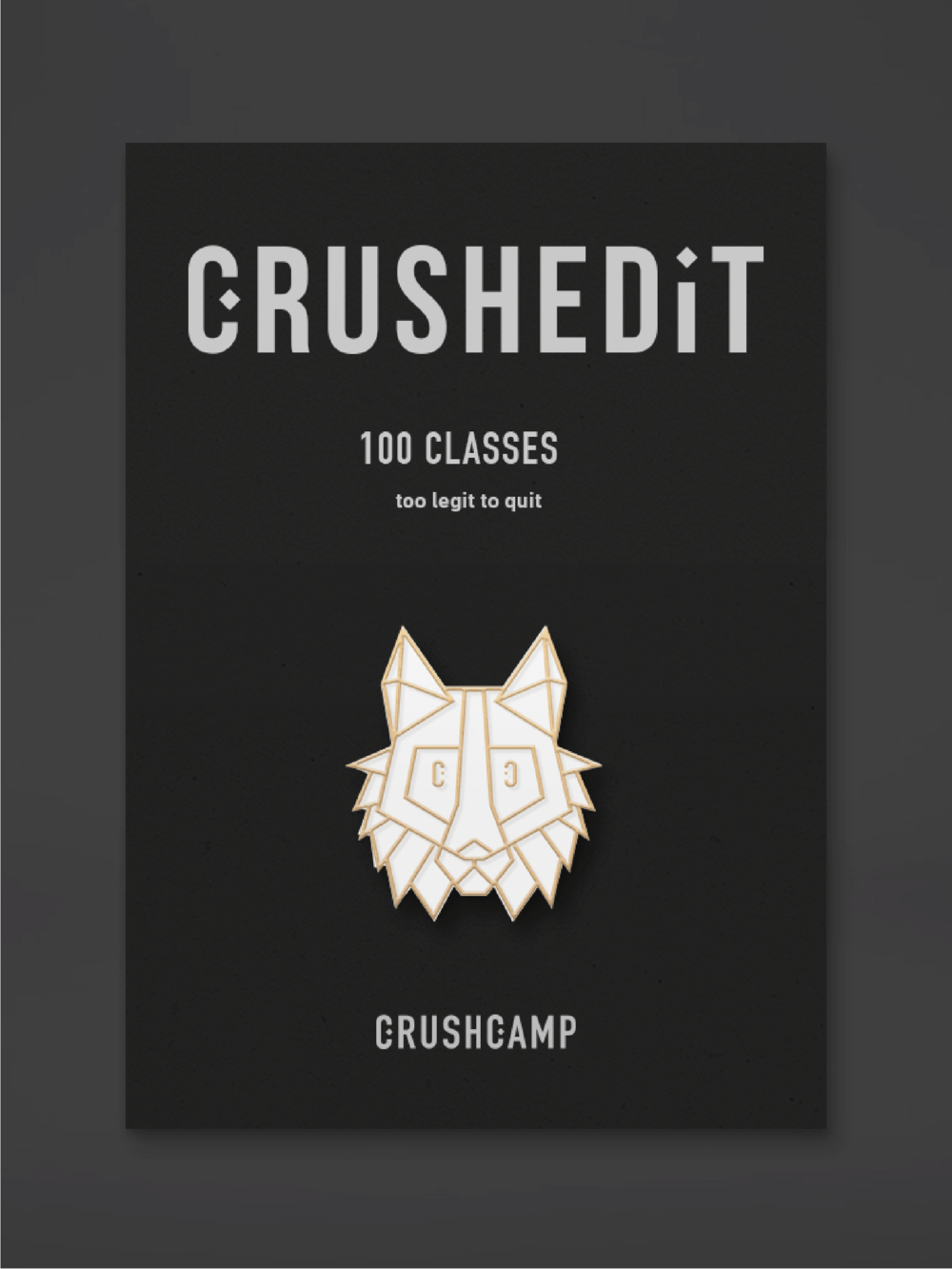 CrushCamp Graphic Design | Trout + Taylor www.troutandtaylor.com
