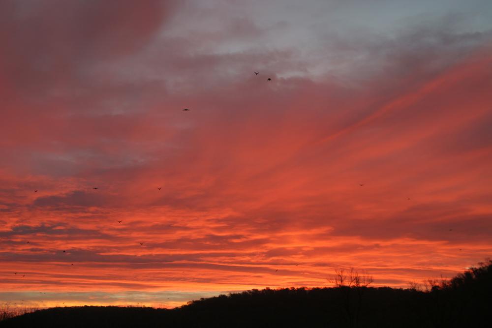 Inn.sunset.10.06.jpg