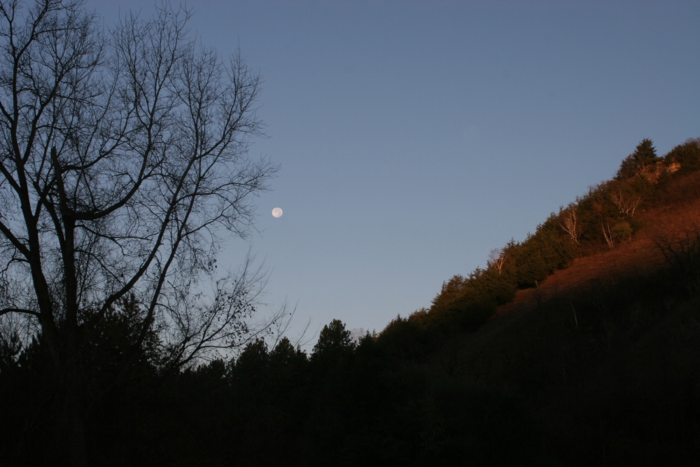 north hill moonrise