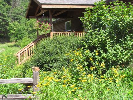 Cottage.2012.jpg