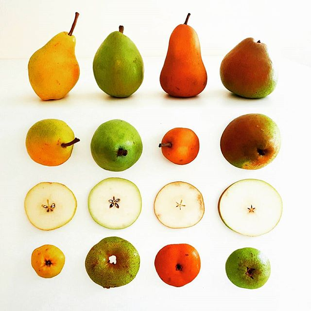 "🍐PEAR PRESSURE? We're here to help! 🍐vs.🍐L➡️R Bartlett, D'Anjou, Bosc, Comice. #Bartlett pears have a smooth texture, yellow skin when ripe, and the juicy ""pear"" flavor you are most familiar with. #DAnjou (aka #Anjou) are egg-shaped and pale green in color. They're quite firm with a mellow, sweet flavor that  sometimes has citrus or apple-y notes. #Bosc pears are known for their long necks, fat bottoms and brown/yellow color. They're flesh is crisp and creamy with a sweet flavor and winter spice notes. #Comice pears are yellow-green with a red blush. Their flesh is sweet and ""buttery smooth"" and is often considered the best eating #pear. 💡PRODUCE 101: Always handle #pears with care. At the store, their skin should be shiny & taut, as they ripen at home their skin will become matte. Store in a cool place; ripening generally takes 4-5 days. They'll become fragrant and the flesh near the stem will give slightly to pressure. Once ripe, store in the refrigerator for 2-3 days. × × × #produce #producedepartment #produce101 #fruits #fruit #grocery #wholefoods #traderjoes #cooking #vegetarian #vegan #foodphoto #foodphotography #foodart #fruitart #healthy #healthysnack #healthyeating #hawaii #luckywelivehawaii #foodie #🍐"