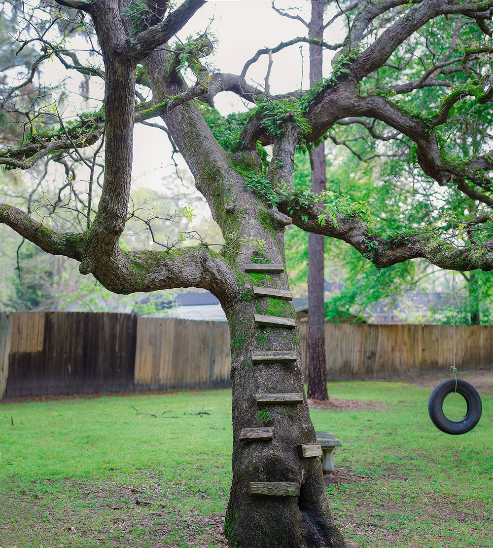 Tire swing for the kids