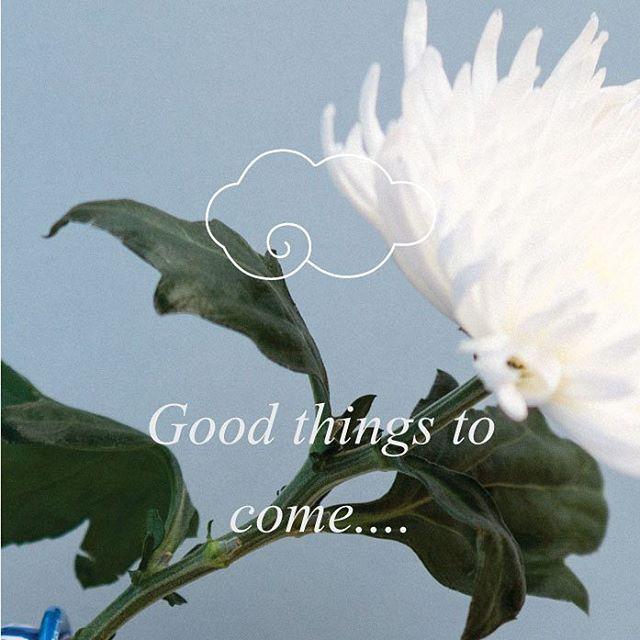 #goodthingstocome #silverlining #studiocelblau  #studiostore #regalitos