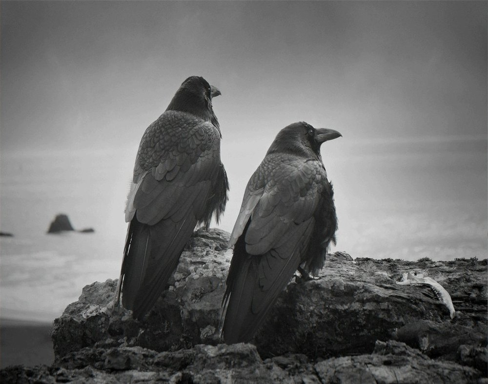 Photography by Beth Moon