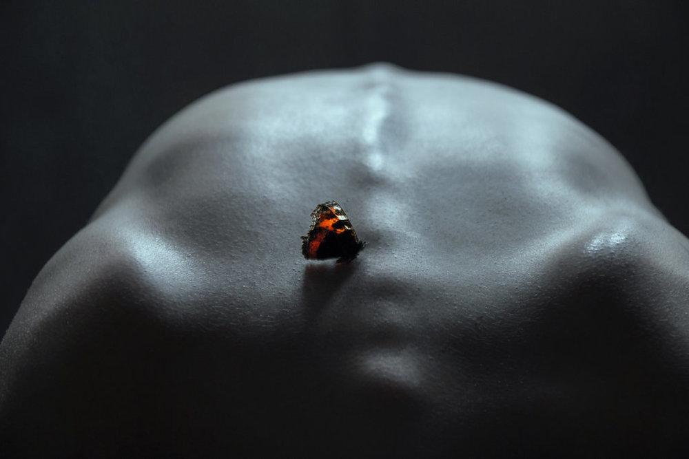 Photography by Elena Helfrecht