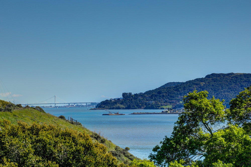 21 Drakes Cove Larkspur Best Realtor 55 MLS - Own Marin Pacific Union - Best Realtor in Marin County.jpg
