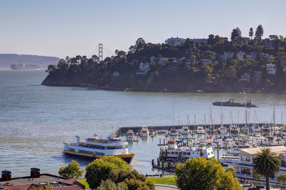 1864 Centro West, Tiburon's Best Realtor174 - Own Marin with Compass - Marin County's Top Realtor.jpg