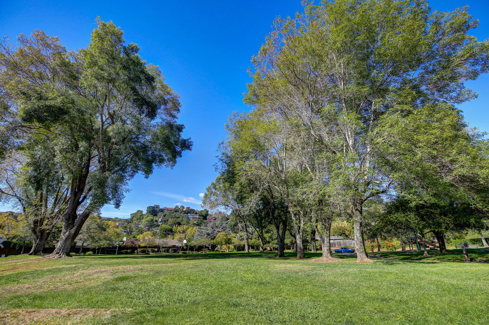 8Parkside 87 - Own Marin with Compass - Marin County Best Realtor.jpg