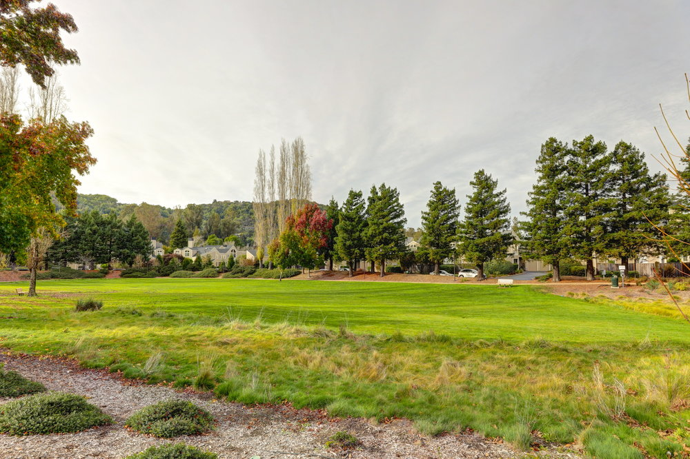 8Parkview 28 - Allie Fornesi at Own Marin with Compass - Corte Madera Realtor.jpg