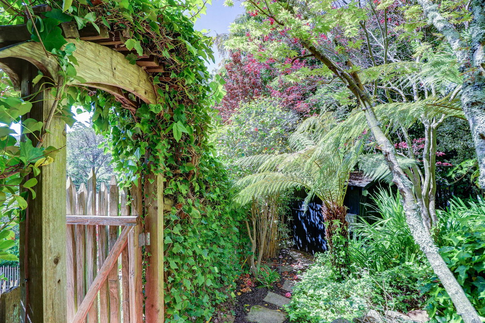 15 Elinor Ave, Homes for sale Mill Valley - 39- Listed by Team Own Marin with Compass Real Estate.jpg