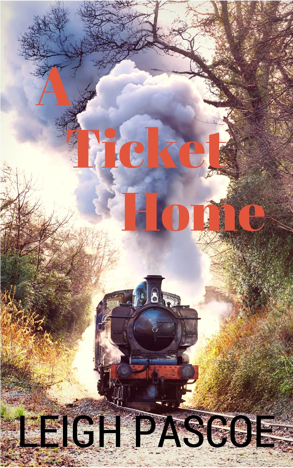 A   Ticket Home - Leigh Pascoe    Emily returns home to the tiny bush community with her young daughter, but fitting in again is proving difficult.  The road ahead will be rough for both mother and daughter.
