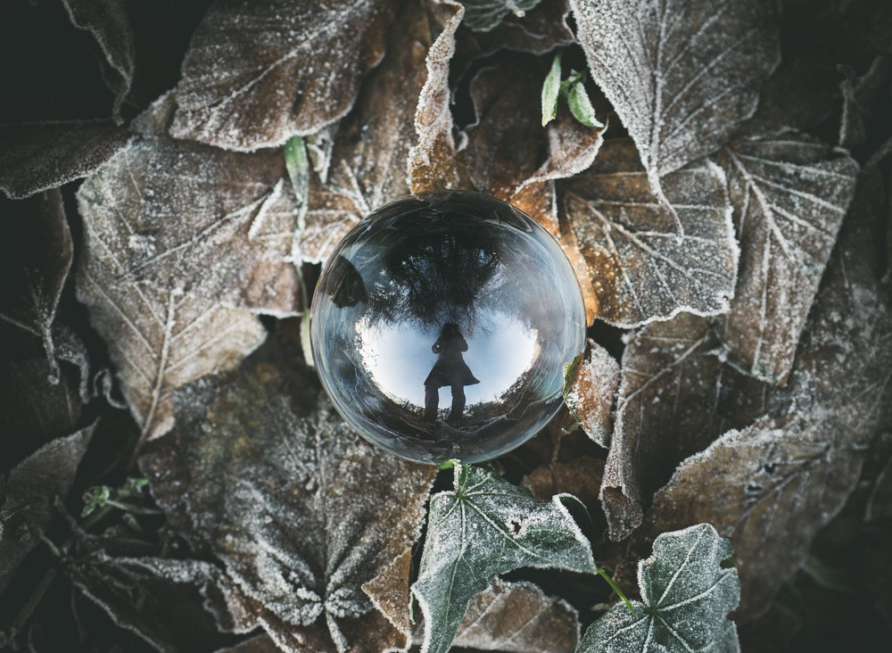 orb in leaves