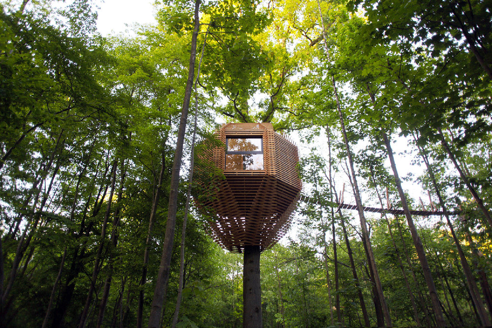 origin-tree-house-1.jpg