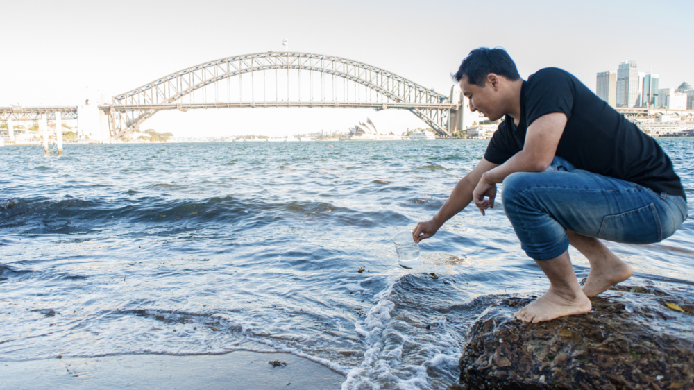 You'll Soon Be Able To Drink Water From Sydney Harbour…But Would You Really Want To? - D'Marge