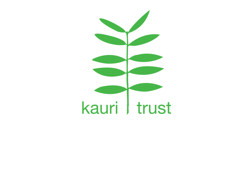 Kauri Trust – Arts trust