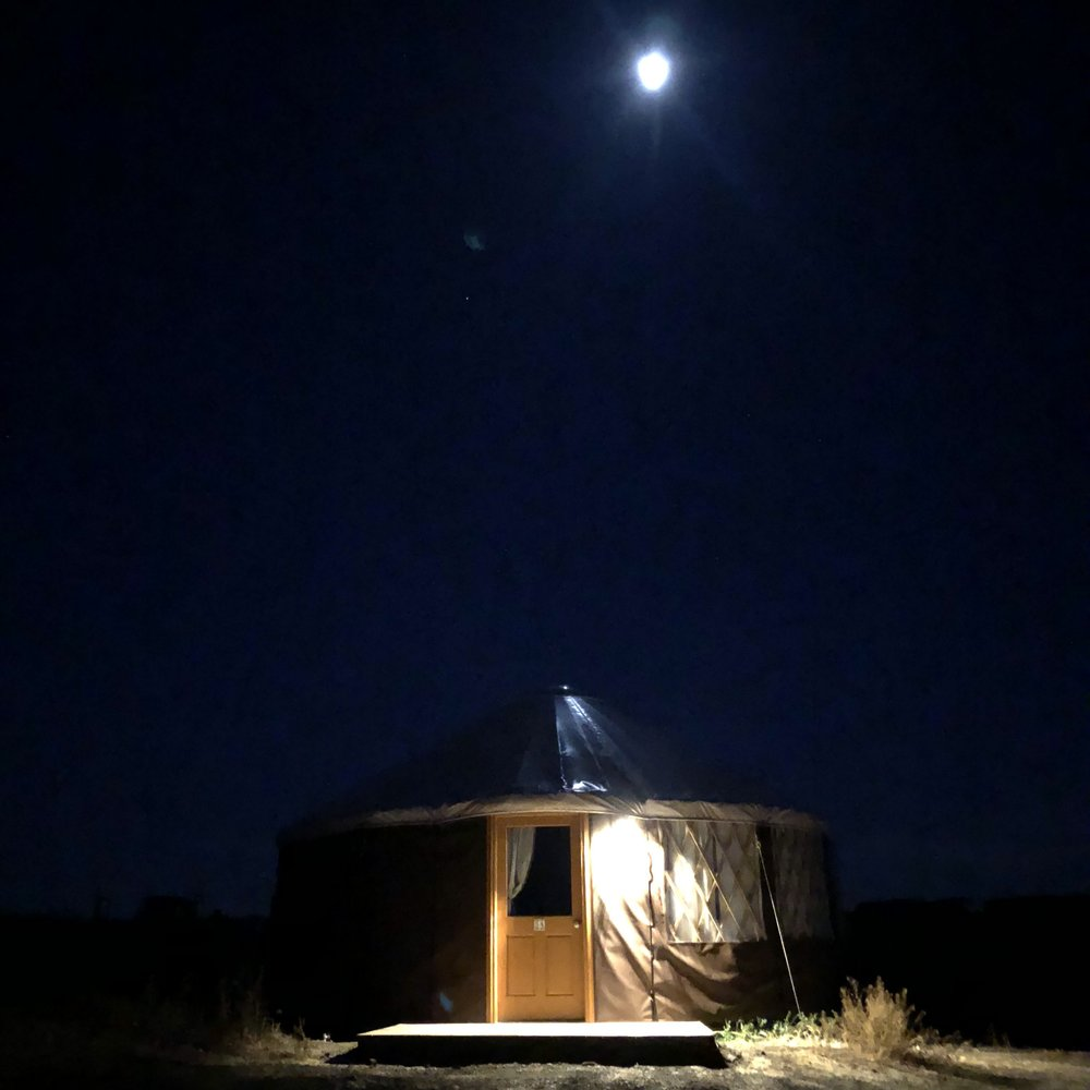 cavebinn-yurt-rightternes-meganternes-seattle-sasquatch