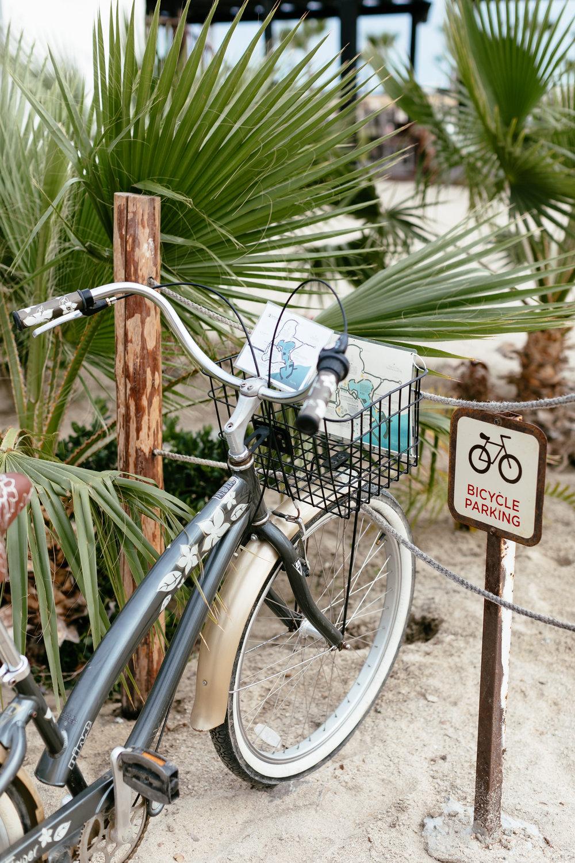 Baja California-8.jpg