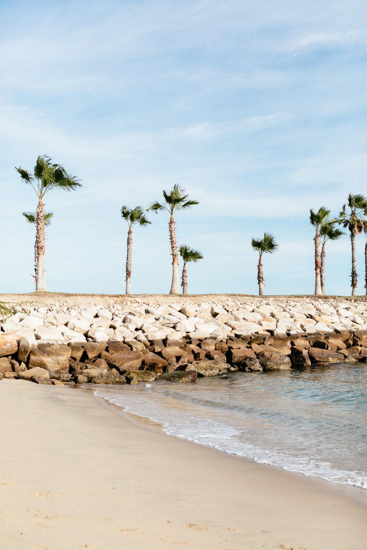 Baja California-23.jpg