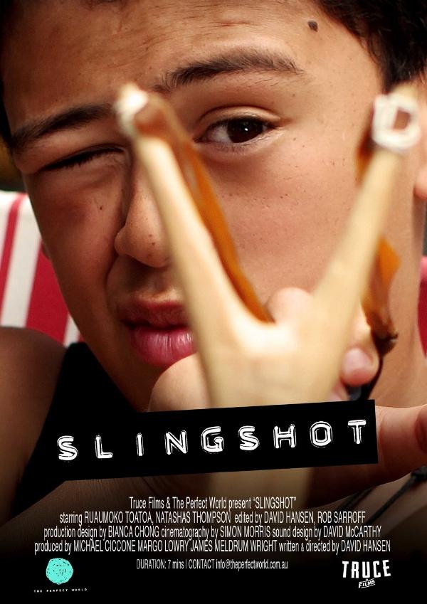 Slingshot_poster
