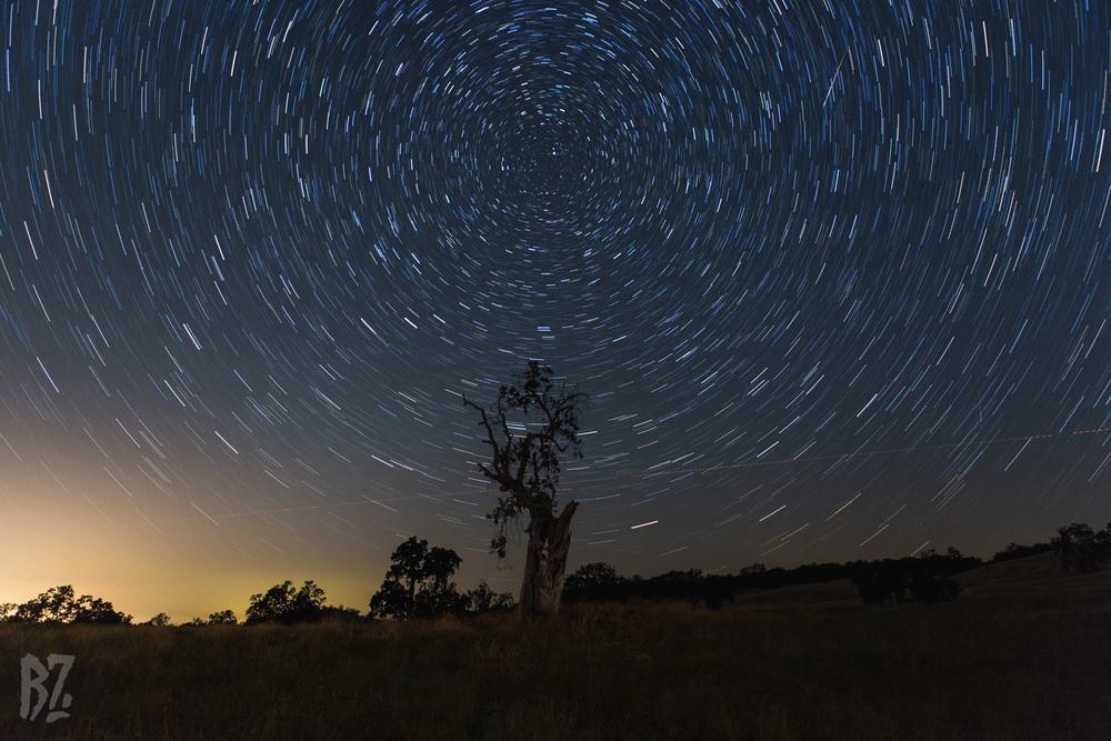 Tree Star Trail Layers.jpg