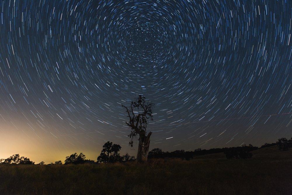 Tree Star Trail Final.jpg