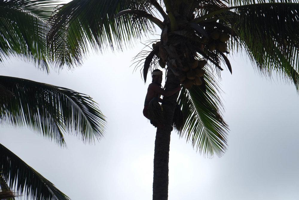 Hawaii-Edits-55.jpg