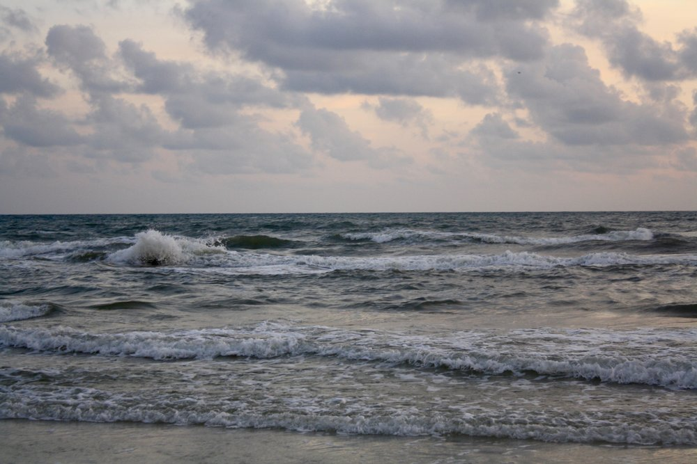 Florida 6.jpg
