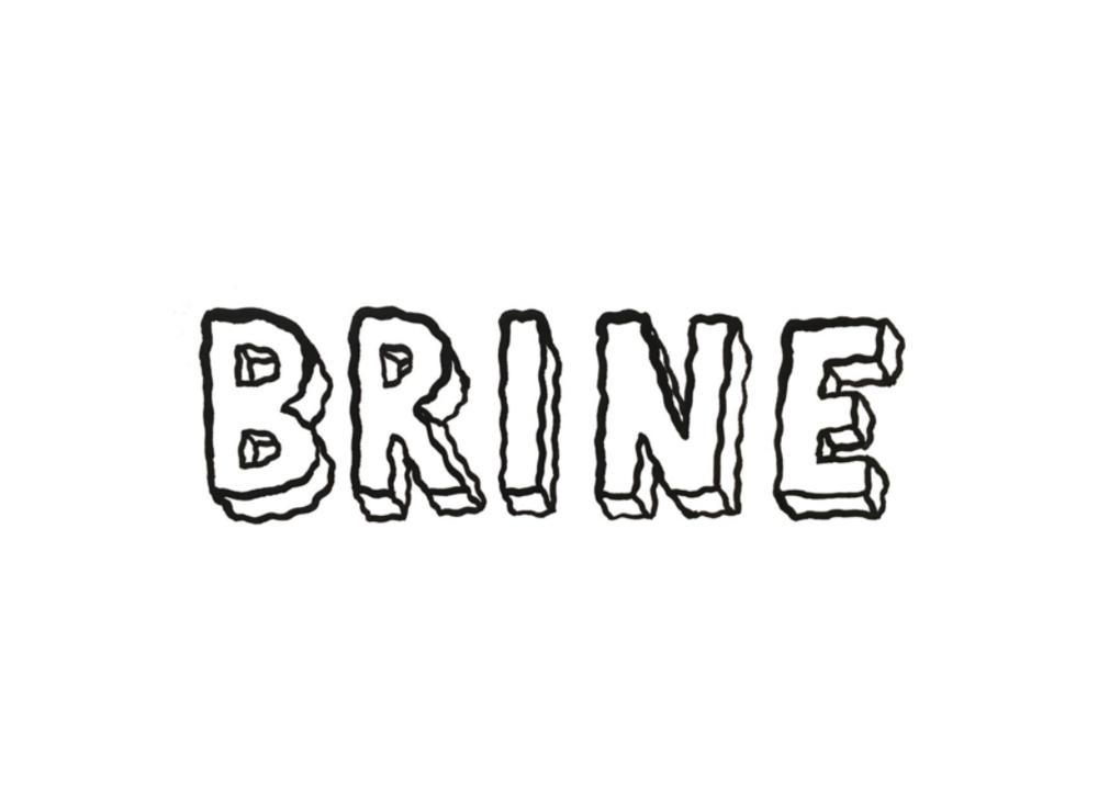 Brine the Zine