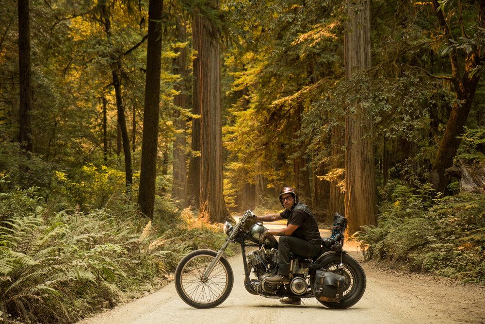 Rob_Williamson_robistall_motorcycles_04.jpg