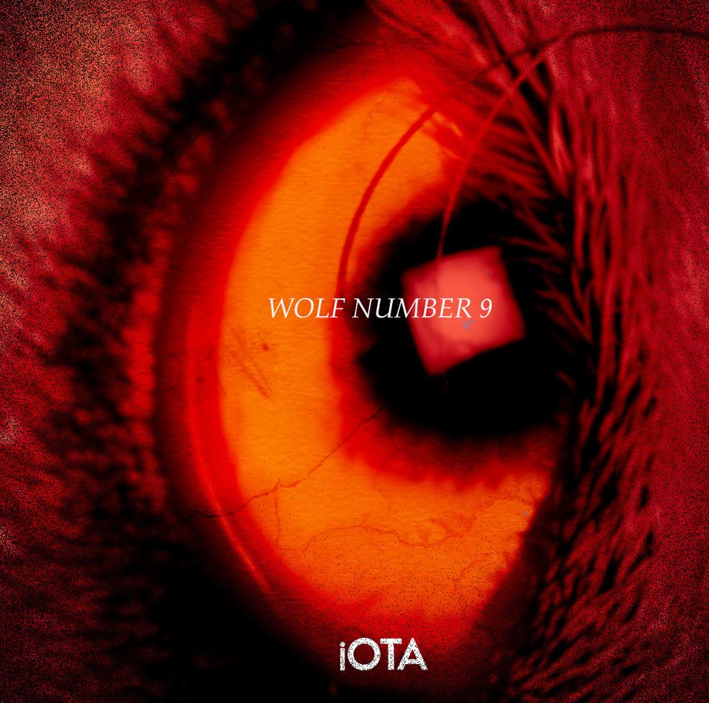 iOTA - ALBUM