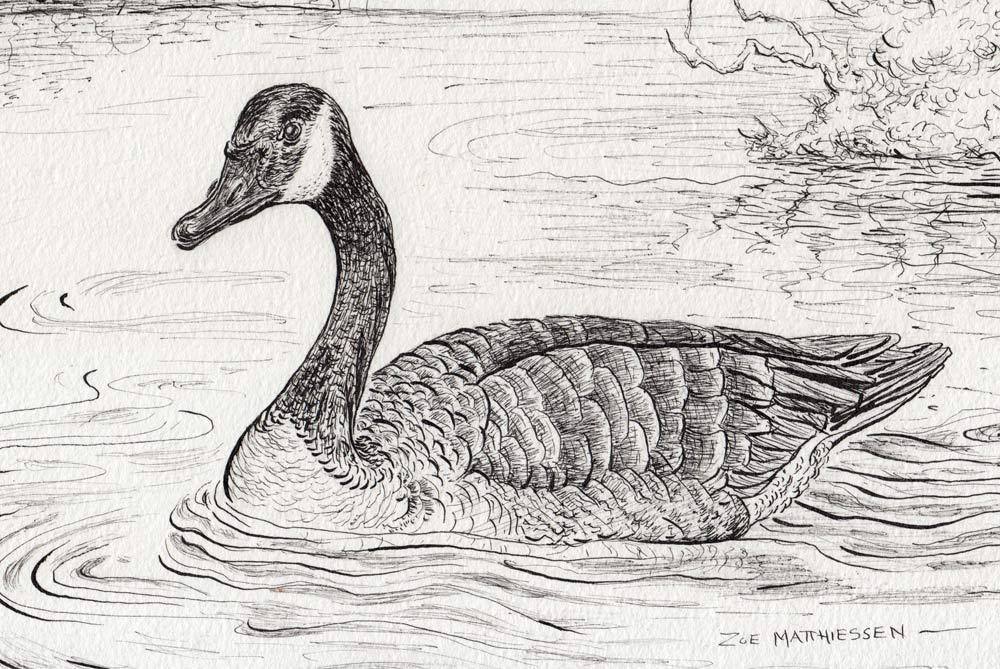Loosey-Goosey