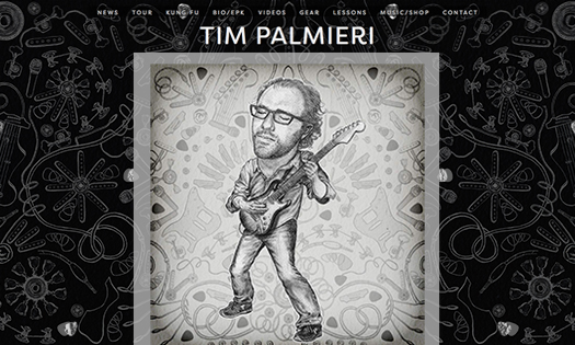 TIM PALMIERI, MUSICIAN (ILLUSTRATIONS, SITE DESIGN)