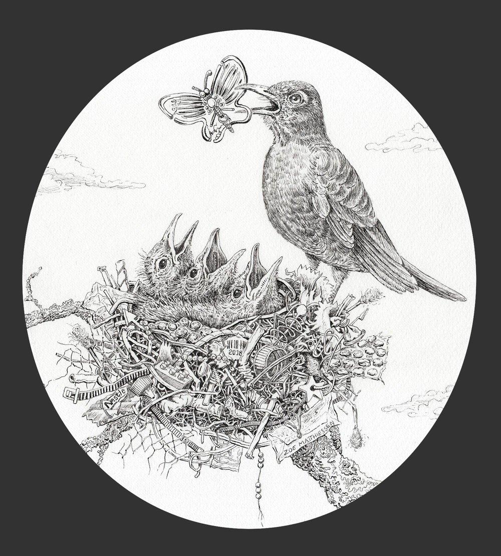 Robbin' The Nest