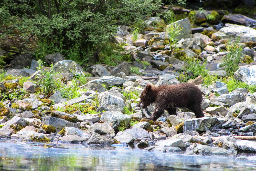 Alaska (125 of 193).jpg