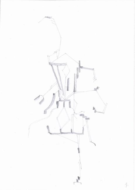 insekt 4.jpg