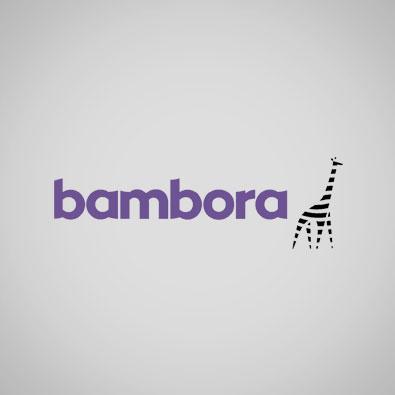 Bambora.jpg