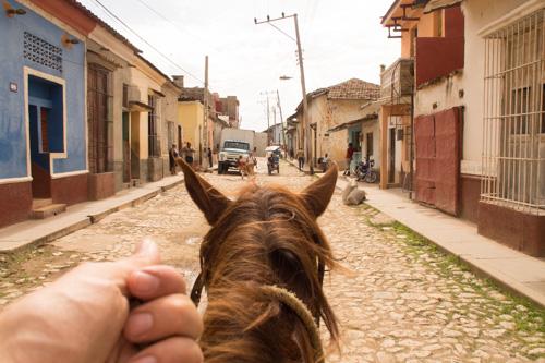 Trinidad_Horse_Mounten_om-45.jpg