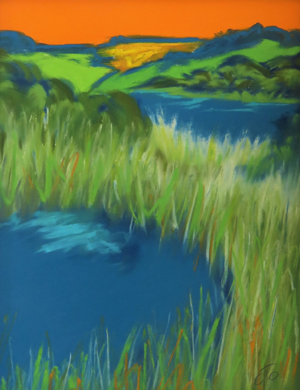 Little Pond - Slapton Ley