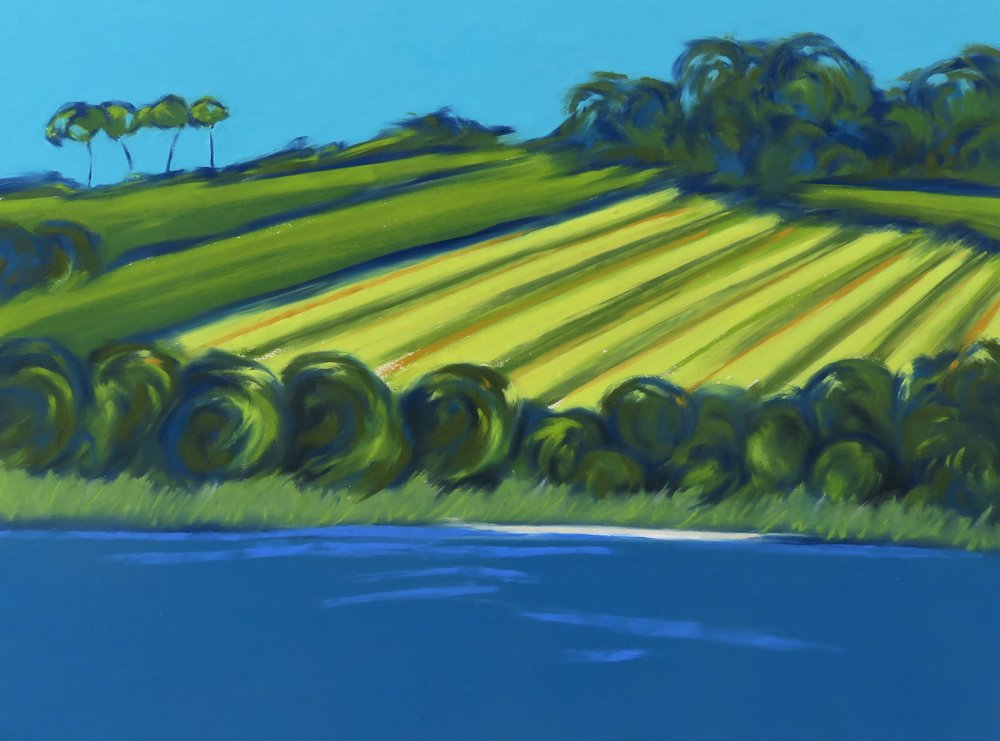 Slapton Ley Fields