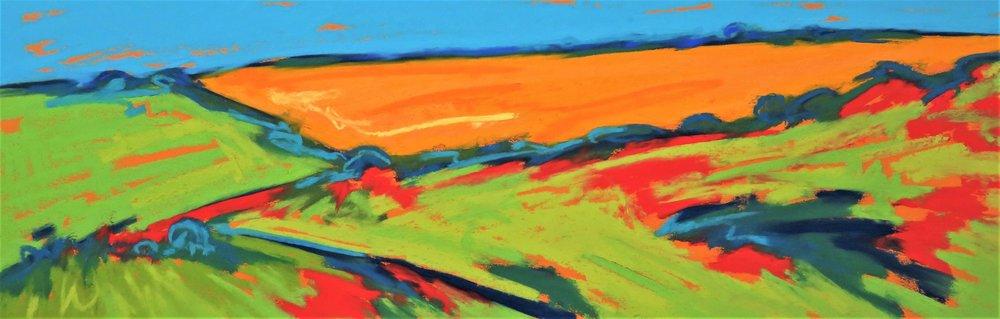 Golden Field Above Gara Rock (RESERVED)
