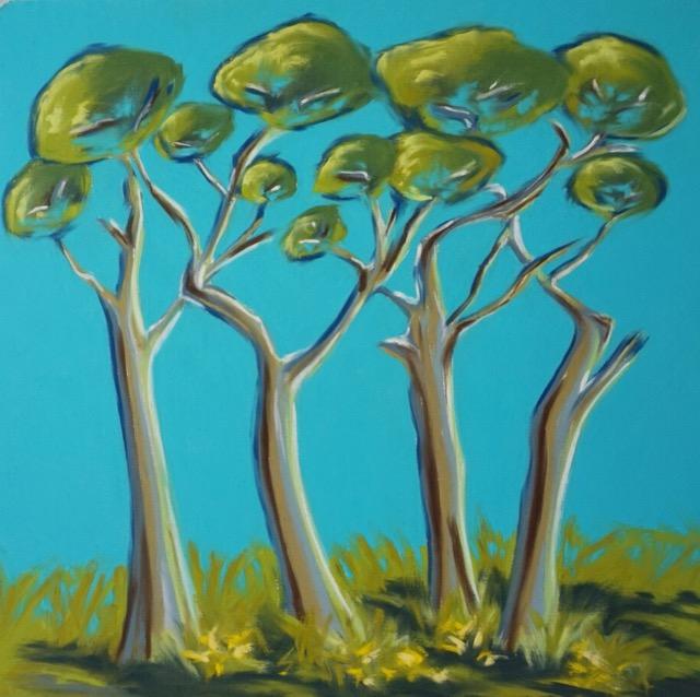 Pine Shadows - Trelissick