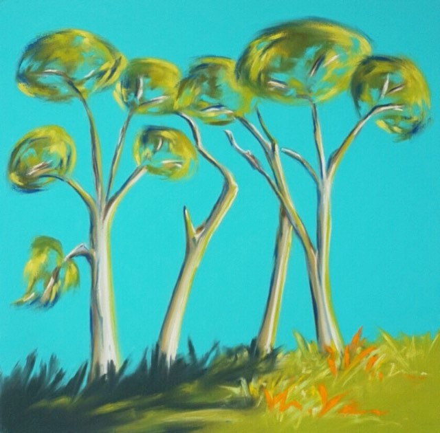 Winter Pines - Trelissick