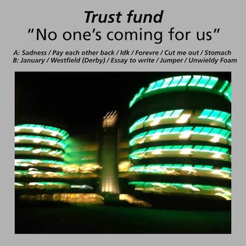 No one's coming for us - Trust Fund  TS016 Digital, Vinyl 9 February 2015  Buy