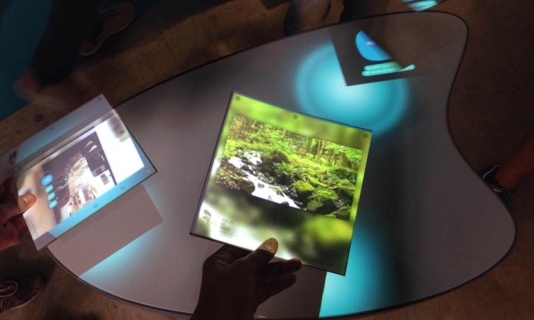 Interactive seedboard