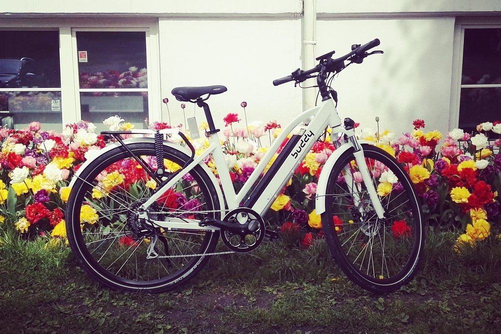 blomster Buddy bike-001.jpg