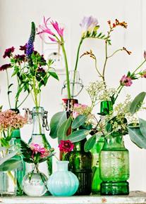 Florals displayed in botanical glass bottles & jars