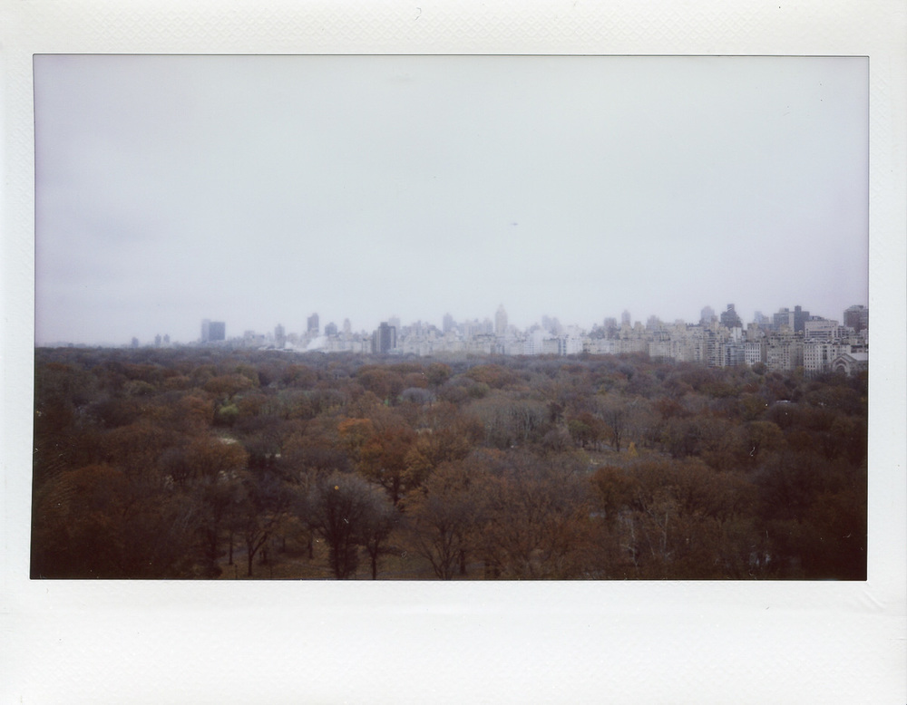 Polaroid of Central Park NYC by Nick Walters.jpg
