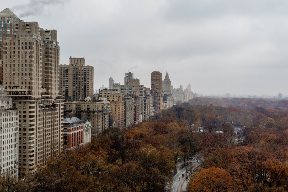 Photograph of Central Park from Bill Cunningham's apartment on Central Park South by Nick Walters.jpg