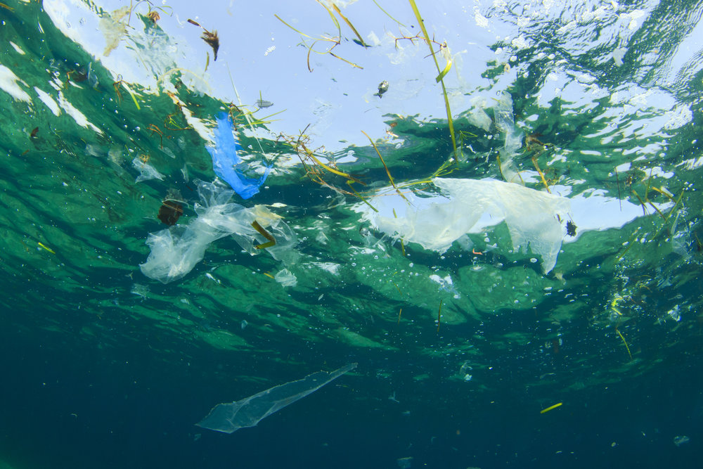 Plastic waste in the ocean – Credits- Richcarey.jpg