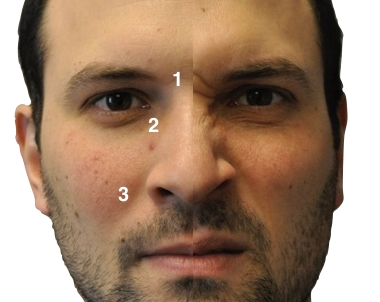 How the face changes from rest (left) when producing the 'S-action' involved in Yupno nose-pointing (right). Read the study  here .
